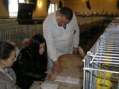 Posudzovanie zvierat delegovanými posudzovateľmi